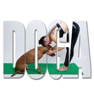 DIS Magazine: Doga