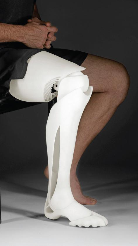 f2a39_artificial-leg