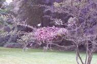 Farting Birds Nest, student work. Image courtesy of Chris Kasper.