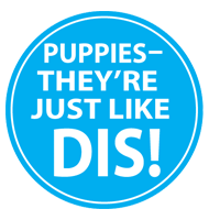 Puppies—They're Just Like DIS