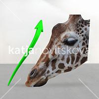 DIS Magazine: DISimages.com » Katja Novitskova