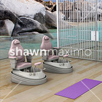 DIS Magazine: DISimages.com » Shawn Maximo
