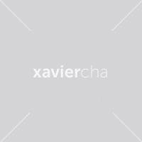 DIS Magazine: DISimages.com » Xavier Cha