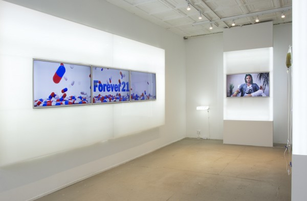 Josh Kline, Quality of Life installation view, 2013