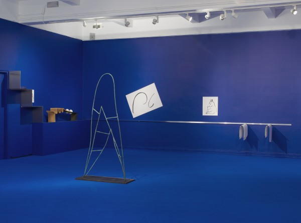 Camille Henrot at Chisenhale Gallery_Andy Keate_01
