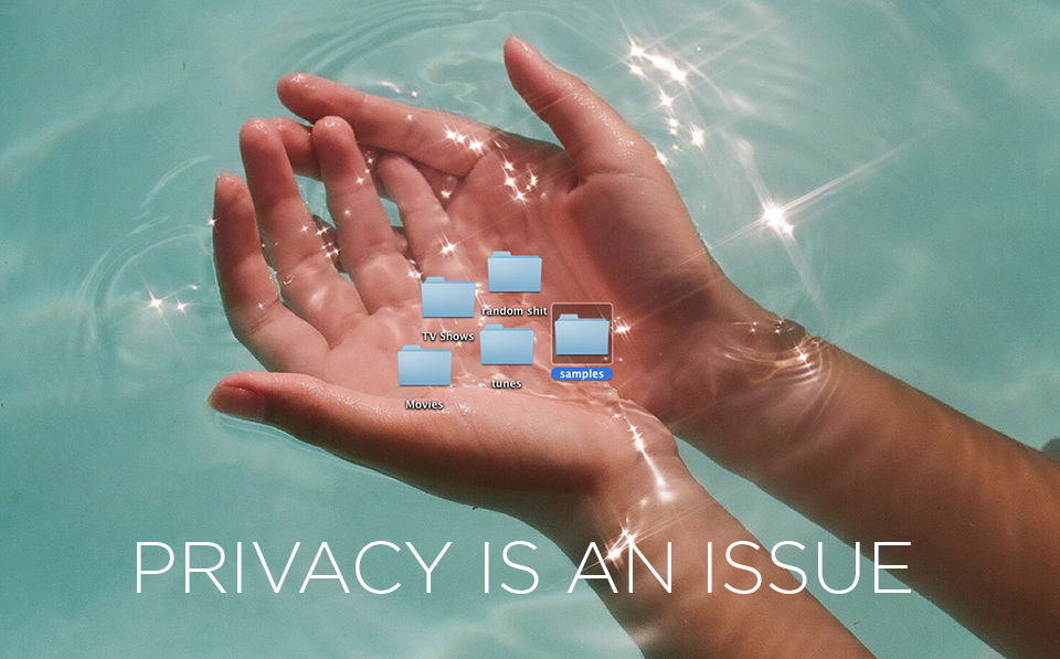 The Privacy Issue