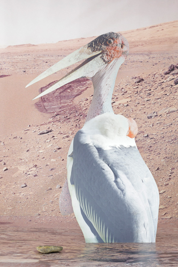 Approximation Mars II, 2014 digital print on aluminum, cutout display