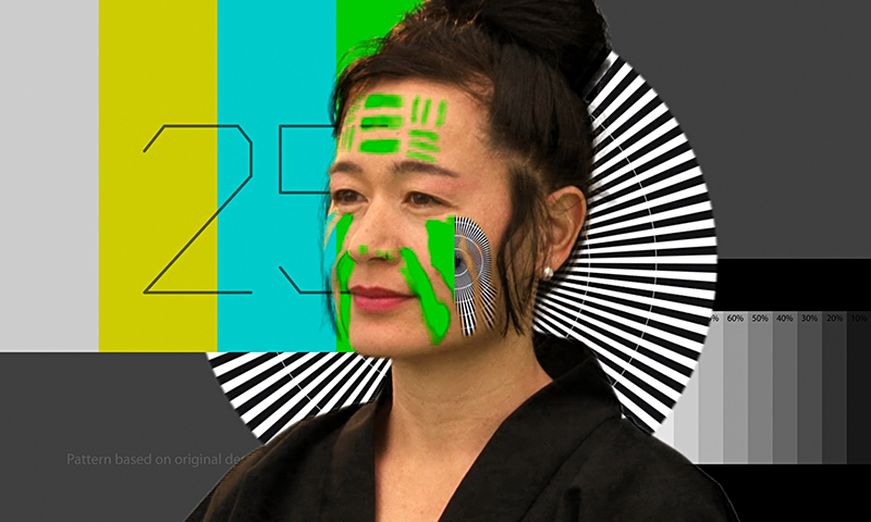 Hito Steyerl, How Not To Be Seen: A Fucking Didactic Educational .MOV File (2013)