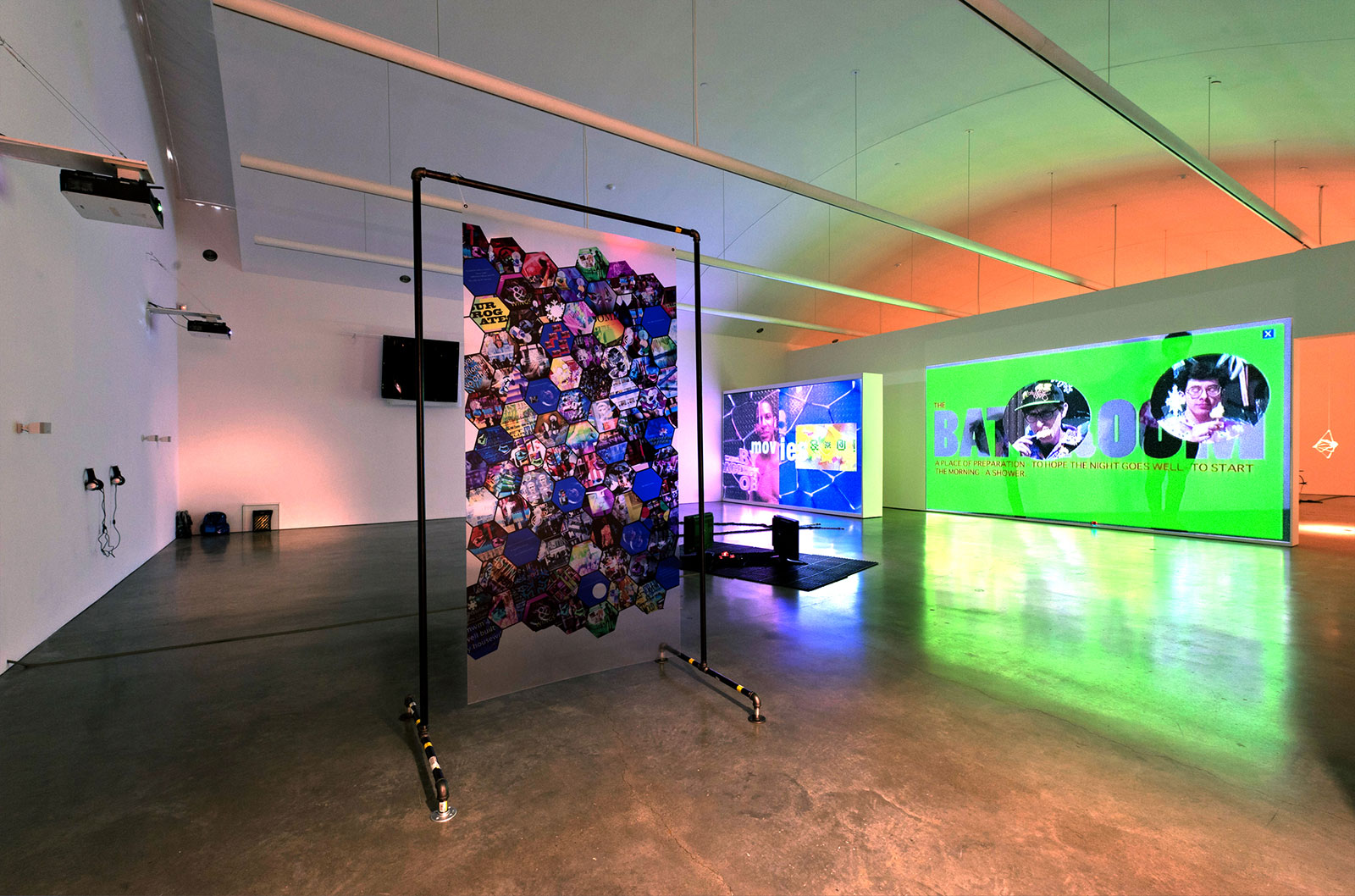 Installation view of Break My Body,  Hold My Bones CCS Bard Hessel Museum, 2011