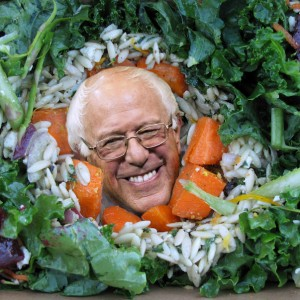 DIS Magazine: Bernie Sanders for President